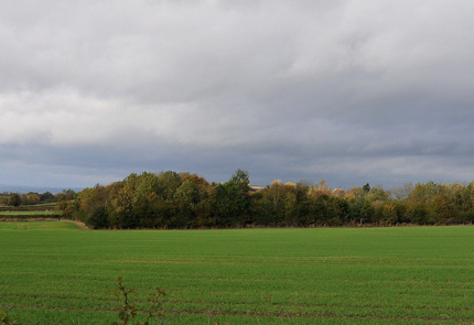 km8-site